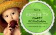 Top 10 Eko Hity